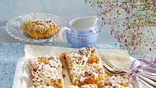 aprikosenkuchen vom blech - Foto: RFF