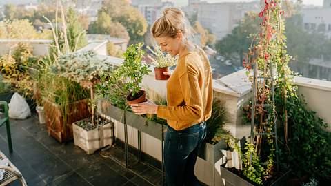 Frau mit Pflanzen auf Balkon - Foto: iStock/AleksandarNakic
