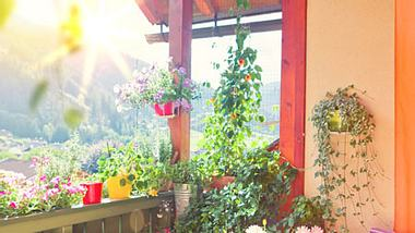 balkonideen eva brenner - Foto: Fotolia