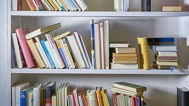 Weißes Bücherregal mit Büchern - Foto: iStock/pascal malamas
