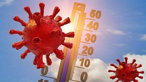 Corona: Unglaubliche Prognose für den Sommer! - Foto: iStock/summerphotos