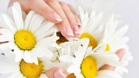 Daisy Nails: Ab jetzt gehören Gänseblümchen auf unsere Nägel! - Foto: Nataliia_Melnychuk/iStock