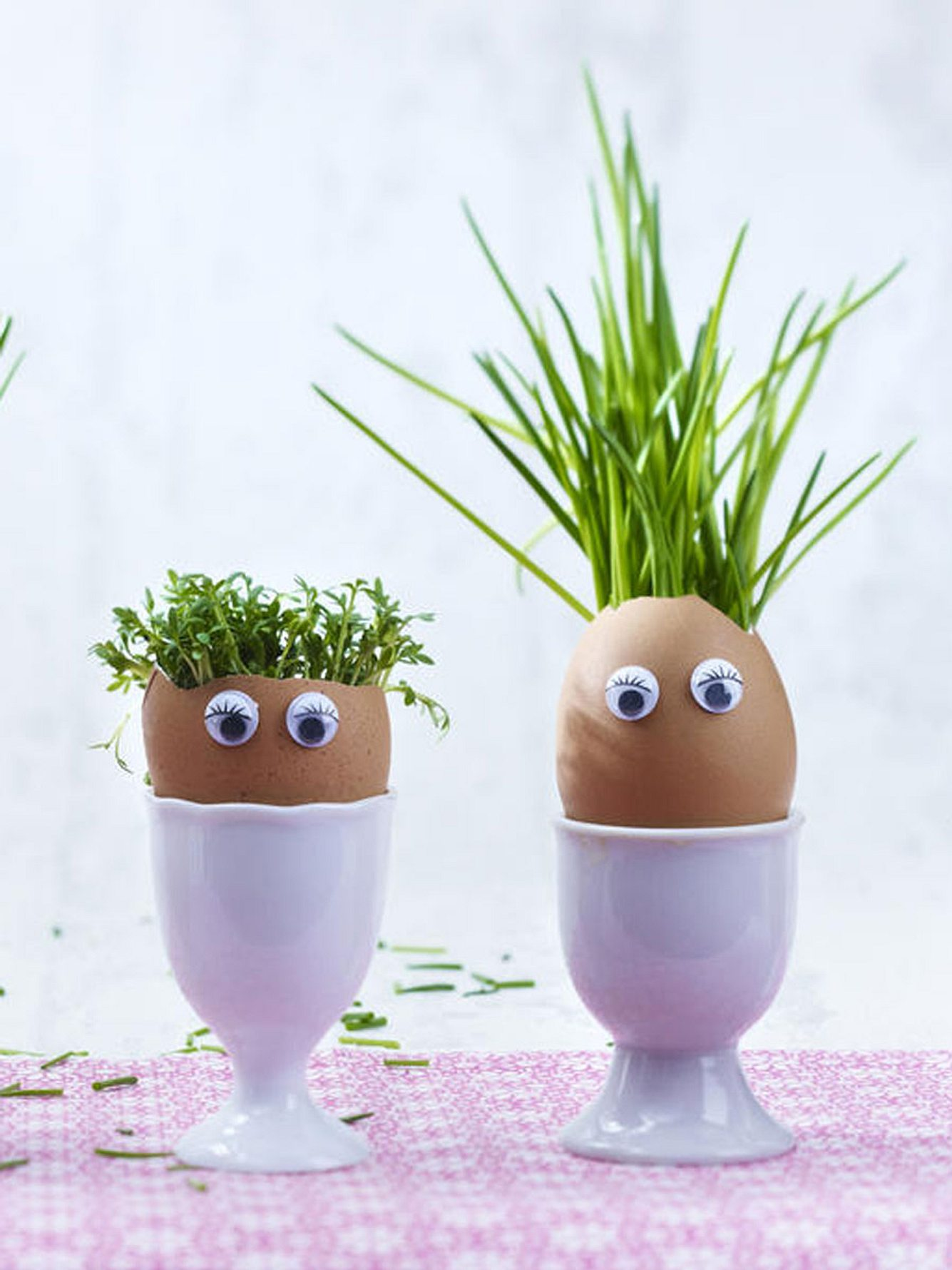 diy egglings