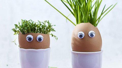 diy egglings - Foto: deco&style