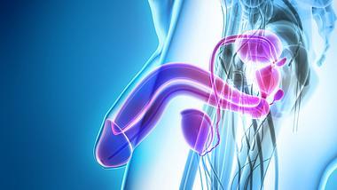 Corona-Penis: Erektionsstörungen nach Infektion - Foto: iStock / yodiyim