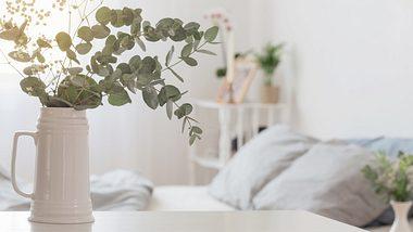 Eukalyptus in einer weißen Keramikvase - Foto: iStock/Maya23K