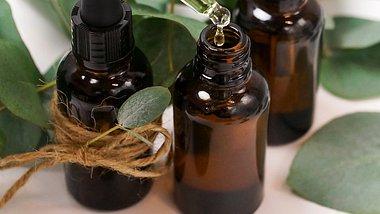 Eukalyptusöl - Wirkung und Anwendung - Foto: IrenaStar/iStock