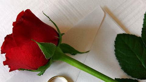 fotolia5134 rose liebesbrief abschied rrf - Foto: RRF, fotolia