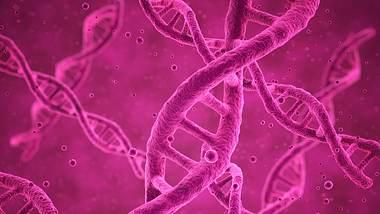 In China sind erstmalig genetisch veränderte Kinder zur Welt gekommen. - Foto: iStock/spawns
