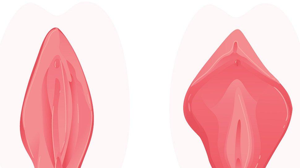 Hässliche Vagina: Was soll ich tun, wenn ich meine Vulva abstoßend finde? - Foto: sabelskaya/iStock