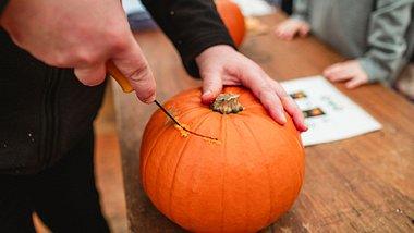 Halloween 2020 zu Hause: Beim Kürbisschnitzen kannst du dich kreativ austoben - Foto: SolStock/iStock