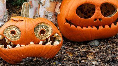 Halloween Kürbis Vorlagen: Die schönsten Ideen fürs Kürbis schnitzen - Foto: PETERLAKOMY/iStock