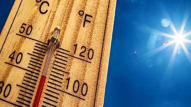 Experten haben schlimme Prognosen für den Sommer parat. - Foto: istock/MarianVejcik