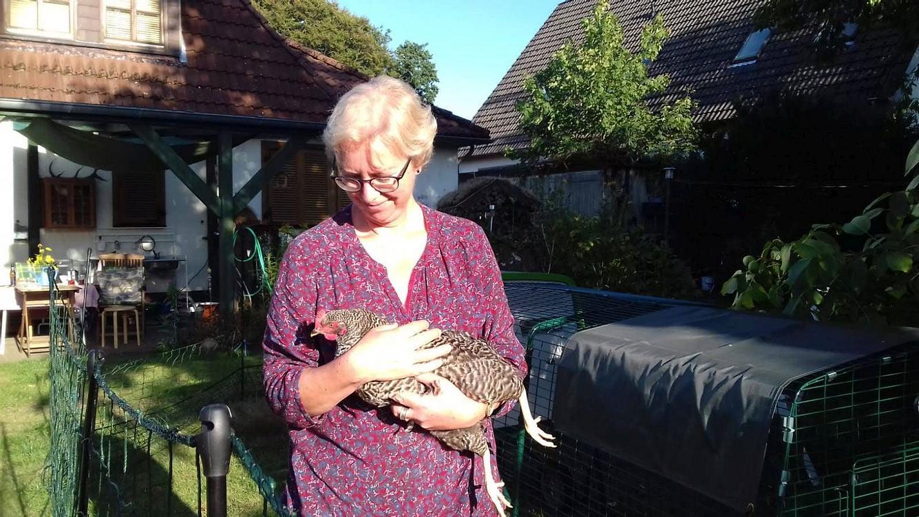 Manche Hühner lassen sich auf den Arm nehmen.