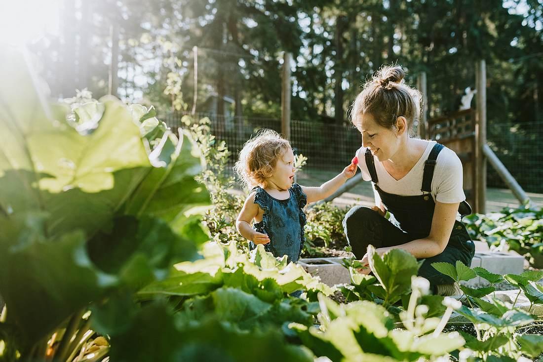 Sommer im Garten: Die besten Tipps für dich und die Familie