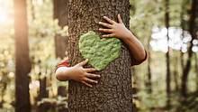Alles was Sie wissen müssen! Fotos, Videos & Infos zum Thema Nachhaltigkeit! - Foto: Nastco / iStock