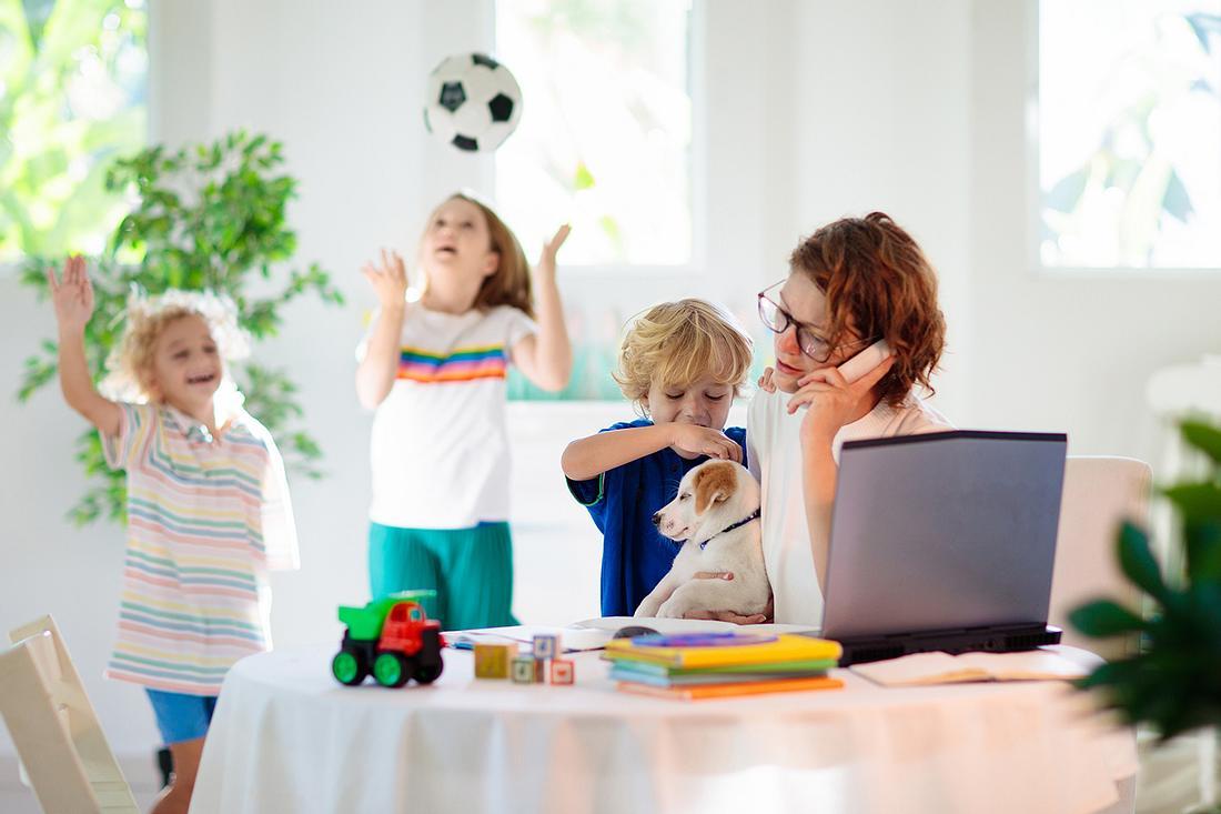 Familie, Tiere und Haushalt: Was hilft, wenn es chaotisch wird