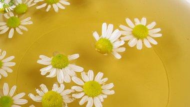 Die Kamillenbad-Wirkung auf deinen Körper ist vielfältig - Foto: HeikeRau/iStock