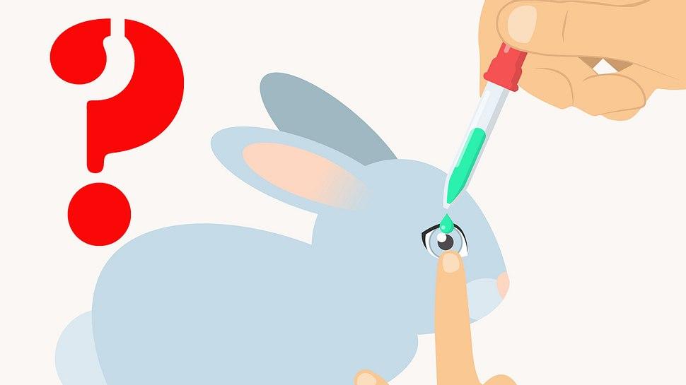 Ist deine Kosmetik wirklich tierversuchsfrei? So findest du es heraus! - Foto: iStock