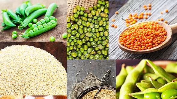 In diesen veganen Lebensmitteln stecken viele Proteine - Foto: iStock