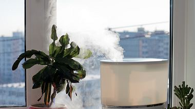 Luftreiniger sind beliebt - aber funktionieren sie auch? - Foto: iStock