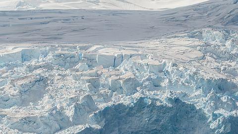 In der Antarktis haben Forscher eine interessante Entdeckung gemacht. - Foto: Getty Images/ Alessandro Dahan