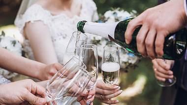 Auf dem Polterabend wird auf das Glück des Brautpaares angestoßen! - Foto: Bogdan Kurylo/iStock
