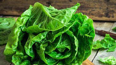 Es leicht, Salat frisch zu halten, damit er knackig bleibt - Foto: wmaster890/iStock