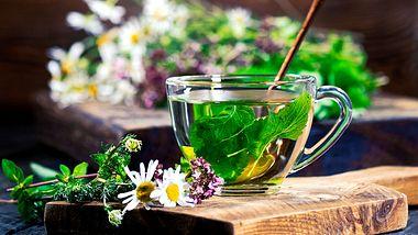 Tee gegen Regelschmerzen: Diese Kräuter helfen - Foto: iStock