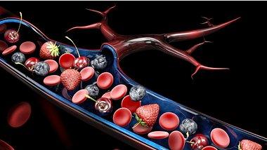 Zuckerquellen in der Blutbahn - Foto: tussik13/iStock