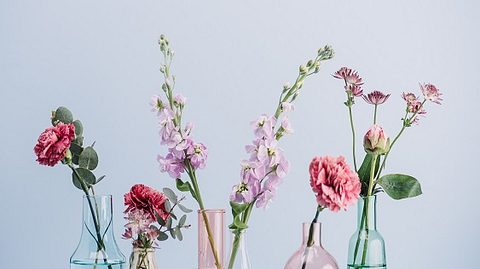 Bunte Vasen aus Glas mit Blumen - Foto: iStock/ knape