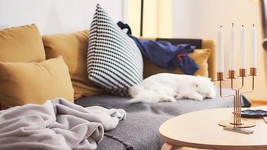 Diese zehn versteckten Luftverschmutzer können in deiner Wohnung sein. - Foto: iStock/pixedeli